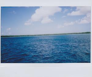 polaroid, sky, and sea image