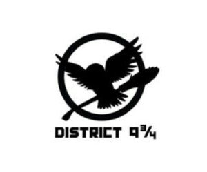 district, harry potter, and hunger games image