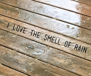 nature, rain, and smell image