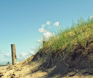 beach, dune, and holiday image