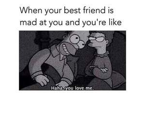 funny, love, and friendship image