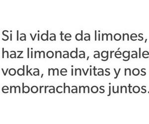 vida, friends, and vodka image