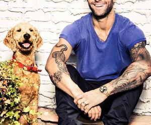 dog, levine, and adam levine image