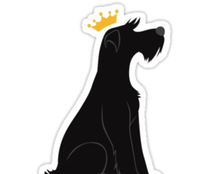 crown, dogs, and pets image