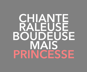 french and princess image