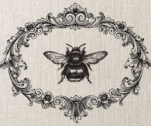bee and vintage image