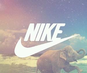 nike, animal, and background image