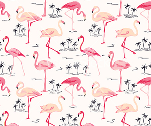 background, bird, and flamingo image