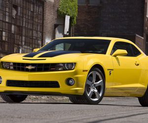 jizz, my baby, and bumblebee image