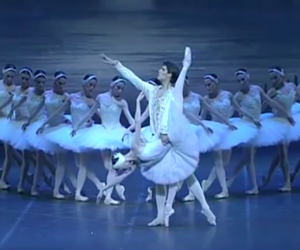 ballet, Swan, and dance image