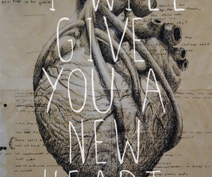 heart, new, and love image