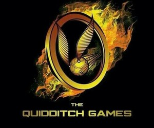harry potter, quidditch, and the hunger games image