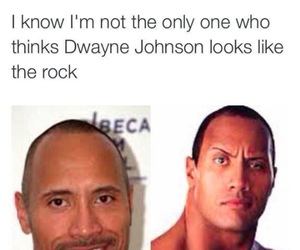 funny, the rock, and lol image