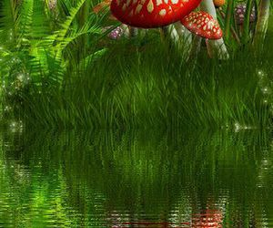 beautiful, grass, and water image