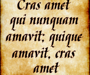 latin, quote, and quotes image