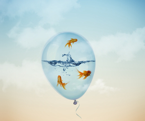 fish, water, and balloon image