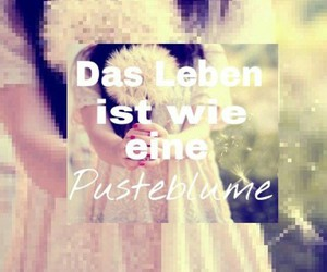 german, quotes, and pusteblume image