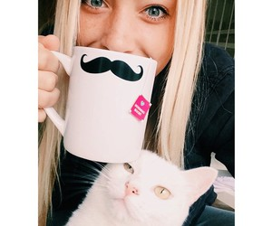 blonde, cat, and funny image