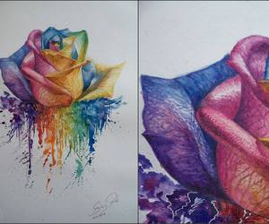 rose, art, and colorful image