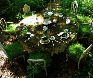 nature, green, and table image