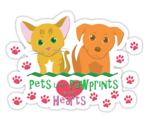 cats, pets, and dogs image