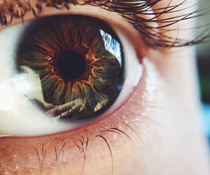eyes, tumblr, and green image