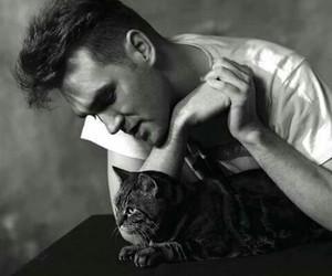 morrisey cat smiths image