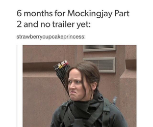 funny, the hunger games, and true story image