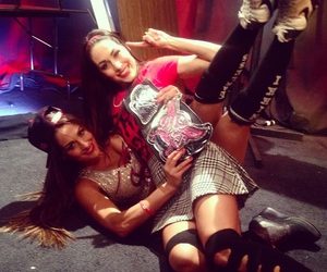 nikki bella, wwe, and wwe divas image