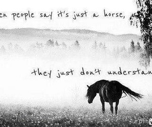39 Images About Equestrian Quotes On We Heart It See More About