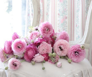 shabby chic, flowers, and pastel image