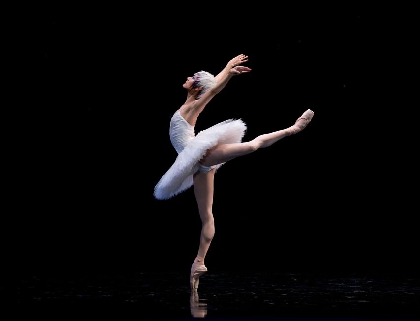 балерины фото в высоком качестве предстал перед камерами