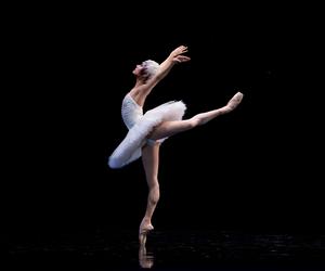 anka, ballet, and dance image