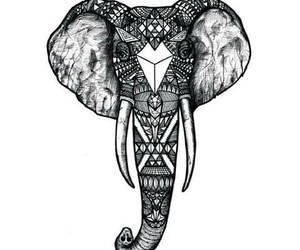 animal, drawing, and elephant image