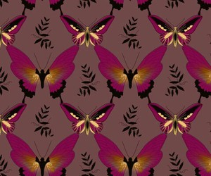 background, wallpaper, and butterfly image
