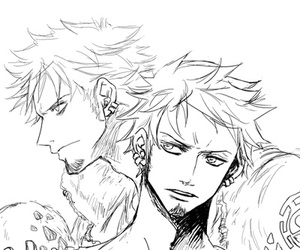 one piece and trafalgar law image