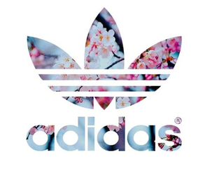 adidas, flowers, and wallpaper image