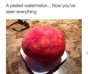 funny, watermelon, and lol image