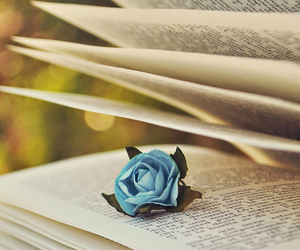 book, rose, and blue image