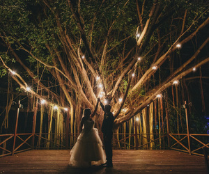 wedding, couple, and lights image