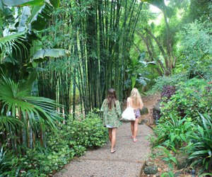 tropical, summer, and green image