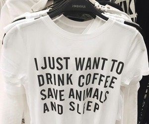 coffee, animals, and sleep image