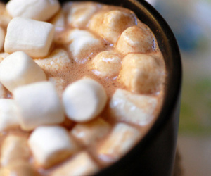 cup, cups, and marshmallow image