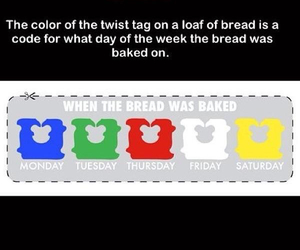 bread and funny image