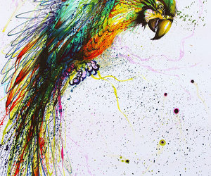 art, bird, and parrot image