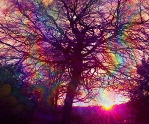 psychedelic and rainbow image