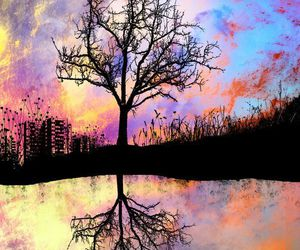 tree, colors, and art image