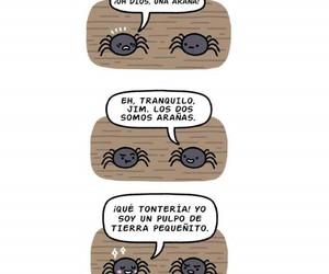 frases graciosas, arañas, and español gracioso image