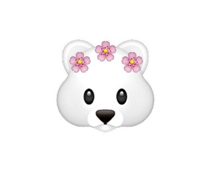bear, flowers, and white image