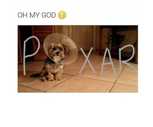 cone, disney, and dog image